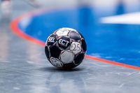 TV Emsdetten erhält die Lizenz für die Saison 2018/19